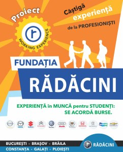 Experienta-in-munca-Radacini