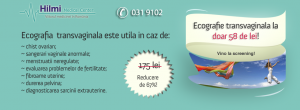 slider-58-lei2-300x110